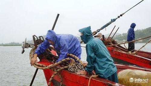 Bão số 10 giật cấp 15 đổ bộ Hà Tĩnh- Quảng Bình - Ảnh 14