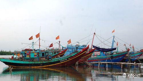 Bão số 10 giật cấp 15 đổ bộ Hà Tĩnh- Quảng Bình - Ảnh 12
