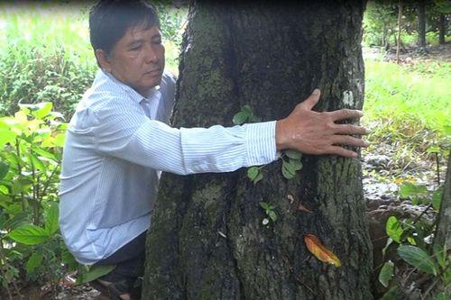Cây hồng nhung trên 100 tuổi, độc nhất vô nhị ở Việt Nam cho quả quanh năm - Ảnh 2