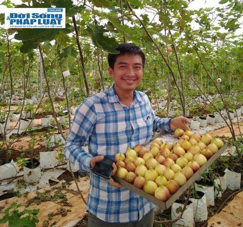 Vườn rau hữu cơ cho thu nhập 350 triệu/tháng của đạo diễn trẻ - Ảnh 13