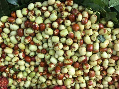 Táo Trung Quốc bán tràn lan ở chợ Việt, nhận diện bằng cách nào? - Ảnh 2