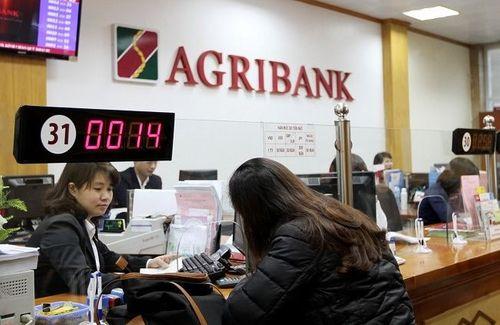 Agribank báo lợi nhuận trước thuế cao kỷ lục - Ảnh 1