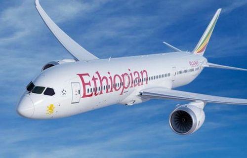 Ngành hàng không châu Phi dự báo kinh doanh tiếp tục thua lỗ - Ảnh 1