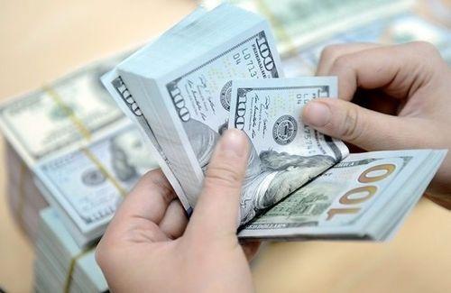 Dự trữ ngoại hối đạt xấp xỉ 52 tỉ USD - Ảnh 1