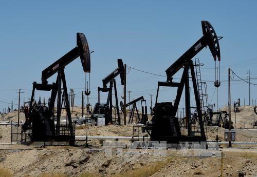 Mỹ sắp sửa là nước sản xuất dầu thô lớn thứ hai thế giới - Ảnh 1