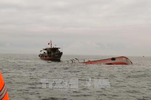 Tàu hàng đâm chìm tàu cá rồi bỏ chạy, 15 thuyền viên rơi xuống biển - Ảnh 1
