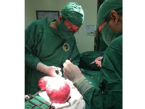 Cắt bỏ thành công khối u tử cung nặng gần 3,5 kg  - Ảnh 1