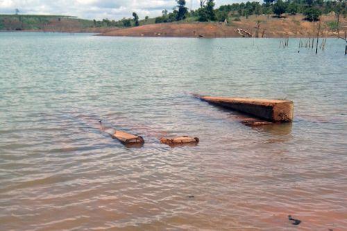Khai thác cát, bất ngờ phát hiện hơn 50 khối gỗ sao đen dưới lòng sông - Ảnh 1