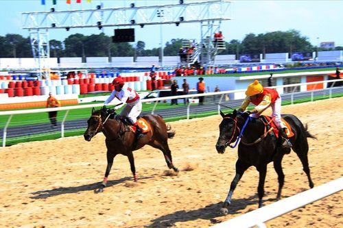 """Chiều vợ như đại gia Dũng """"lò vôi"""", rót 100 triệu USD xây trường đua ngựa từ ý tưởng ngẫu hứng - Ảnh 2"""