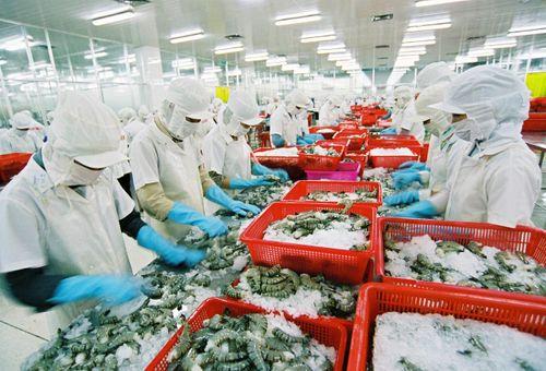 Saudi Arabia tạm dừng nhập khẩu thủy sản Việt Nam - Ảnh 1