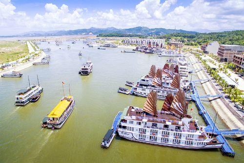 Để phương tiện khác đeo bám khách du lịch, 3 tàu trên vịnh Hạ Long bị đình chỉ - Ảnh 1