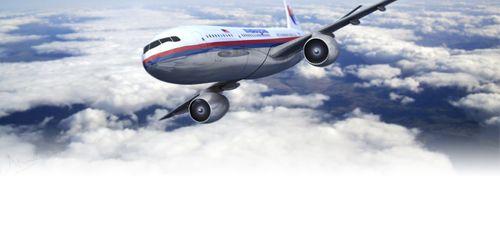 Vụ MH370  mất tích: Hai phát thanh viên khẳng định nhìn thấy vật thể nghi của máy bay - Ảnh 1