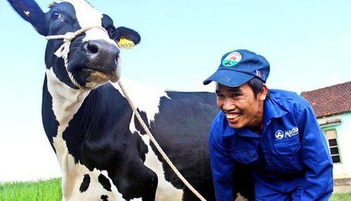 Vinamilk sẵn sàng chi 1.500 tỷ chào mua 47% cổ phần công ty sở hữu Sữa Mộc Châu - Ảnh 1