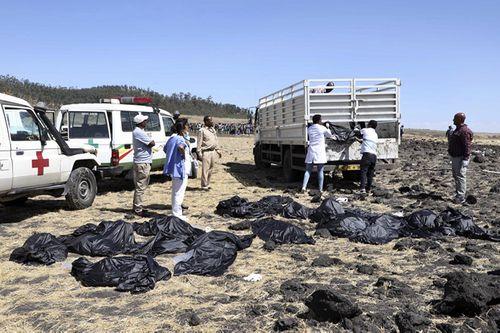 Hàn Quốc cấm các hãng hàng không nhận máy bay 737 Max mới sau thảm kịch Ethiopia - Ảnh 2