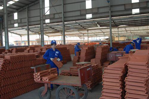 Agribank: Tín dụng tập trung phát triển sản xuất kinh doanh - Ảnh 2