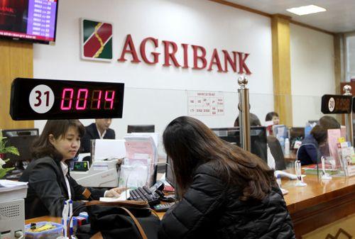 Agribank: Tín dụng tập trung phát triển sản xuất kinh doanh - Ảnh 1