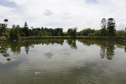 Chiêm ngưỡng trang trại sinh thái Đông Dư - Ảnh 8
