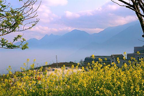 Tháng 3 - Fansipan không chỉ rực vàng hoa cải - Ảnh 7
