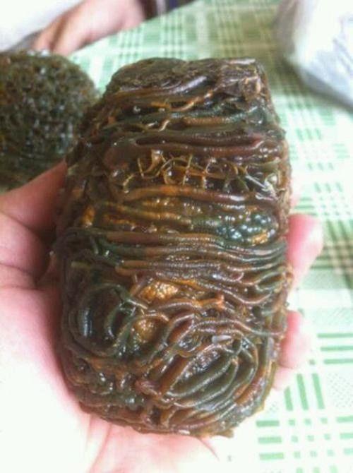 Bí mật phía sau cục đá có hình dáng kì dị như một ổ sinh vật thân mềm - Ảnh 1