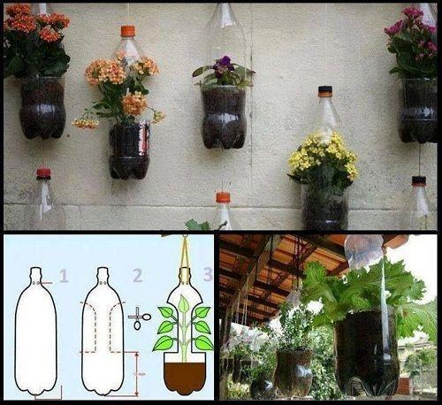 Bỏ túi ngay 7 cách tái sử dụng chai nhựa trong làm vườn - Ảnh 10