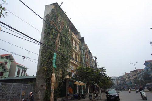 """Ngắm loạt ảnh về những ngôi nhà """"siêu mỏng"""" có """"1-0-2"""" ở Việt Nam - Ảnh 4"""