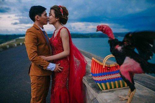 """Hài hước bộ ảnh cưới """"Em một bên và gà một bên"""" của cặp đôi Phú Yên - Ảnh 2"""