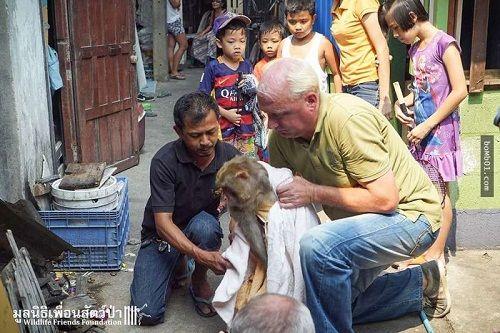 Giải cứu chú khỉ bị kẹt 25 năm trong ngôi nhà bỏ hoang - Ảnh 3