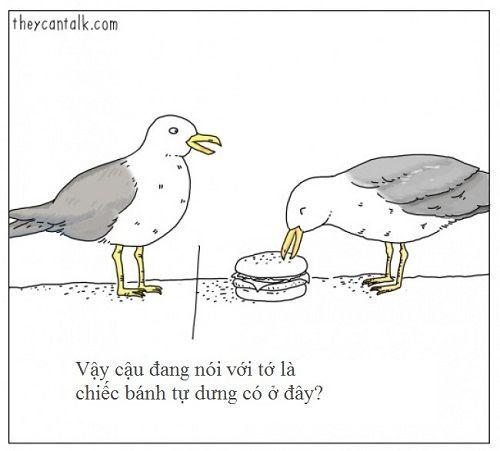 Loạt ảnh lột tả suy nghĩ của động vật khiến bạn cười nghiêng ngả - Ảnh 10
