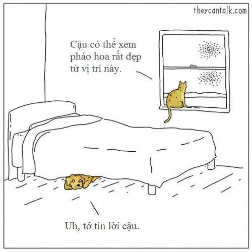 Loạt ảnh lột tả suy nghĩ của động vật khiến bạn cười nghiêng ngả - Ảnh 3