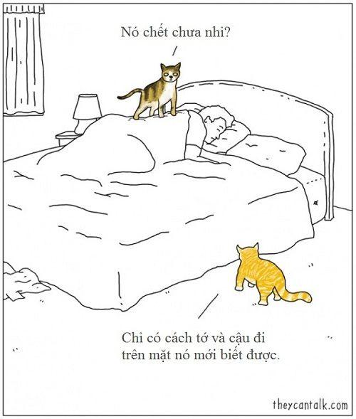 Loạt ảnh lột tả suy nghĩ của động vật khiến bạn cười nghiêng ngả - Ảnh 2