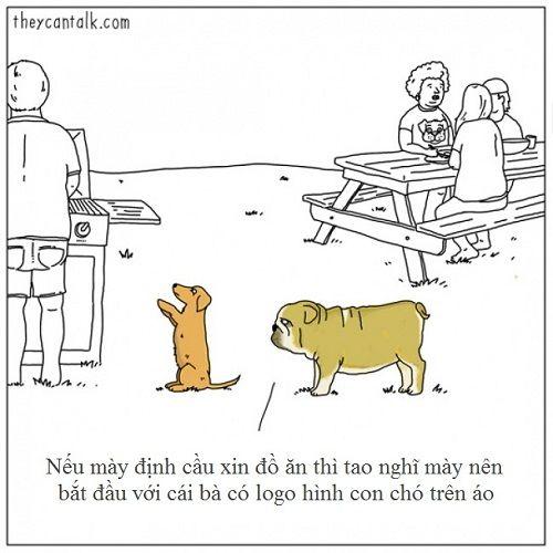Loạt ảnh lột tả suy nghĩ của động vật khiến bạn cười nghiêng ngả - Ảnh 5