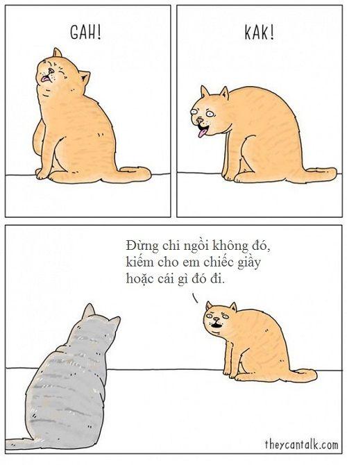 Loạt ảnh lột tả suy nghĩ của động vật khiến bạn cười nghiêng ngả - Ảnh 6