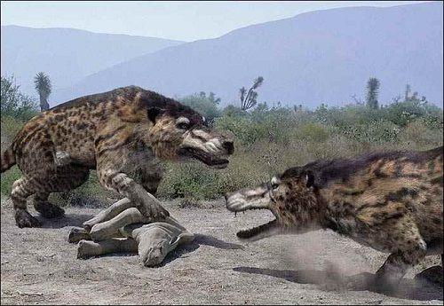 10 động vật khiến con người tuyệt chủng nếu hồi sinh - Ảnh 8