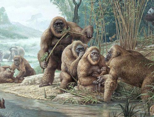 10 động vật khiến con người tuyệt chủng nếu hồi sinh - Ảnh 9