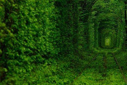 Điểm mặt những đường hầm độc đáo nhất thế giới, Việt Nam góp mặt 1 - Ảnh 8