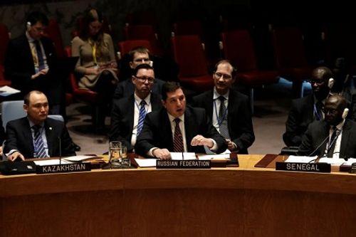 Nga, Trung Quốc phủ quyết dự thảo lệnh trừng phạt Syria của LHQ  - Ảnh 1