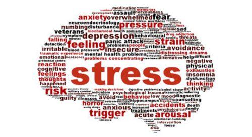 Cách đối phó với những kẻ khó chịu để thành công trong sự nghiệp - Ảnh 3