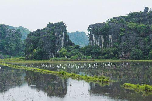 Ngắm hang Múa, Ninh Bình: Tuyệt đẹp trong sắc Thu - Ảnh 9