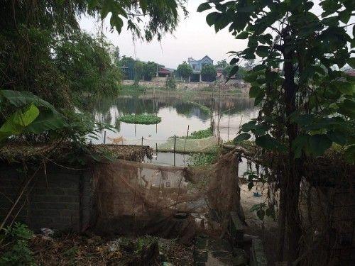 """Xác động vật vứt đầy sông hồ: Dân """"nếm"""" đủ hậu quả - Ảnh 1"""