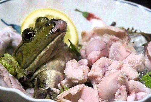 Sán bò trong ngực chỉ vì ăn…ếch sống - Ảnh 1