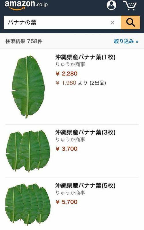 Sốc với lá chuối đăng bán trên Amazon gần 500 nghìn 1 lá - Ảnh 1
