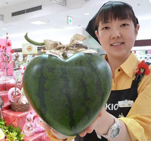 Chán tạo hình vuông, tròn, dưa hấu trái tim giá gần 4 triệu đồng/quả - Ảnh 2
