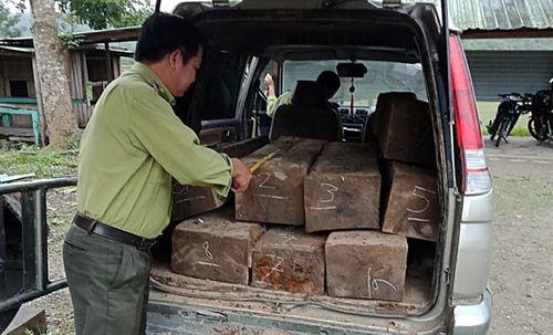 Bị phát hiện chở gỗ lậu, tài xế bỏ xe và gỗ thoát thân - Ảnh 1