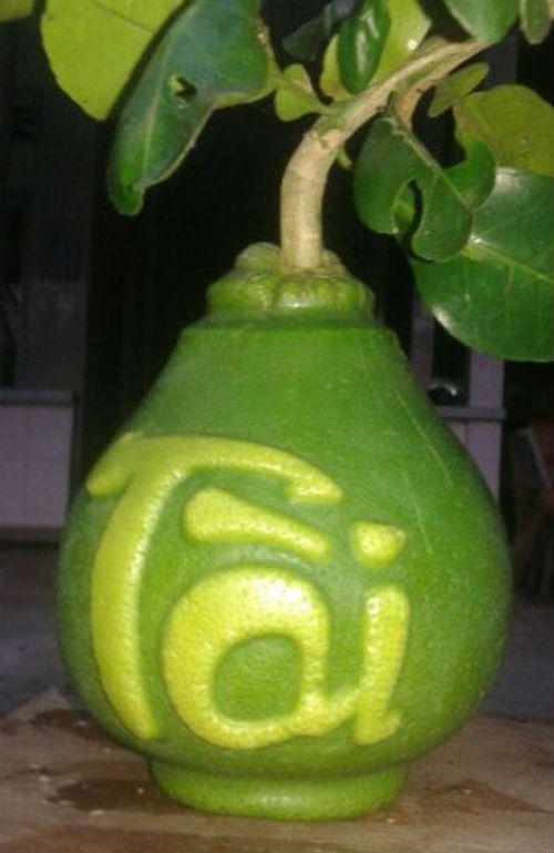 Quà Tết siêu độc: Đào tiên hồ lô giá nửa triệu đồng cho Tết Nguyên Đán - Ảnh 3