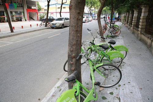 """""""Xe đạp Uber"""" đang trở thành bãi rác phế liệu ở Trung Quốc - Ảnh 4"""