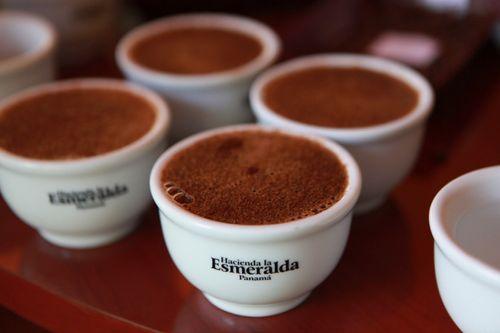 Loại cà phê đắt nhất thế giới 1,2 triệu đồng/tách được tạo ra như thế nào? - Ảnh 2
