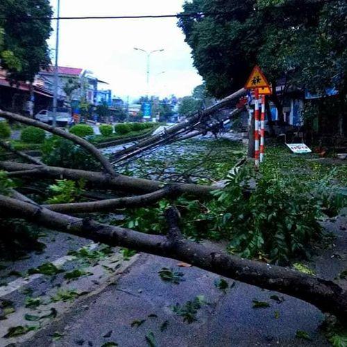 Gió lốc kèm mưa đá tàn phá nhiều nhà cửa ở Sơn La, Bắc Kạn - Ảnh 2