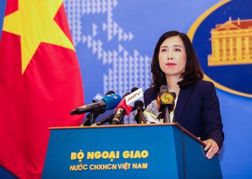 Việt Nam quan ngại về tình hình hiện tại ở Syria - Ảnh 1