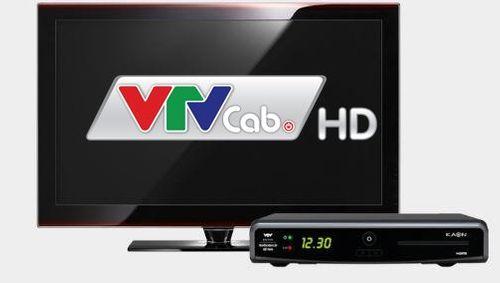 VTVcab cam kết hoàn tiền cho khách hàng vì cắt kênh - Ảnh 1