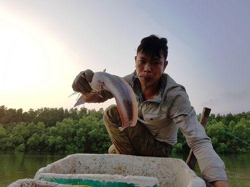 Kiếm tiền triệu mỗi đêm nhờ câu cá ngát ở Sài Gòn  - Ảnh 1
